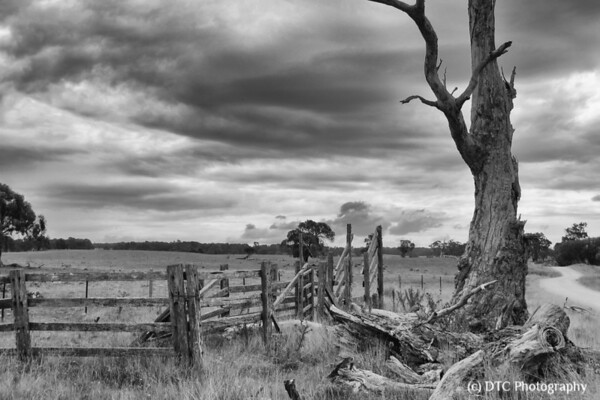 Skyfall : a 'Big Sky' series of the Southern Tablelands