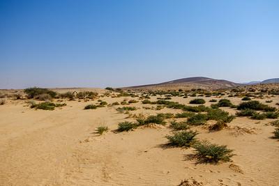 Desert 3 days hiking