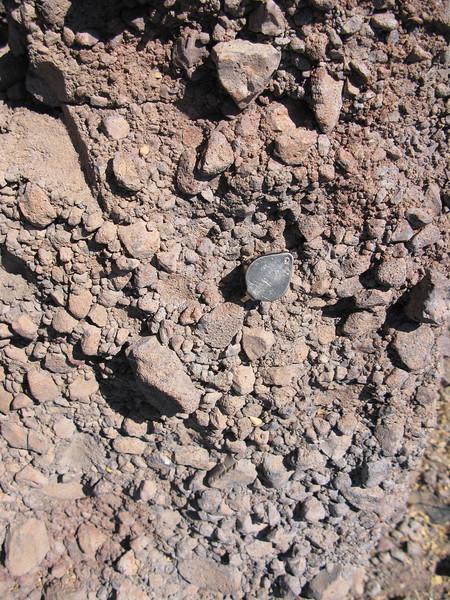 Coronado_grey volcanic conglomerate.jpg