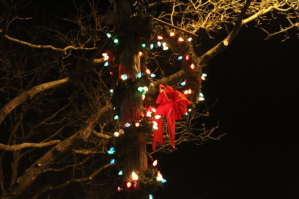 '19 Burton Christmas Decorations