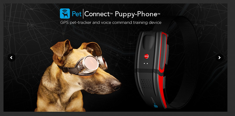 PetConnectPuppyPhone.jpg