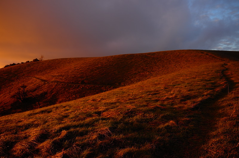 Magic hour at Russian Ridge