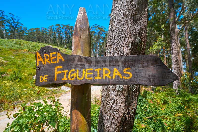 Figueiras nudist beach road sign in Islas Cies island