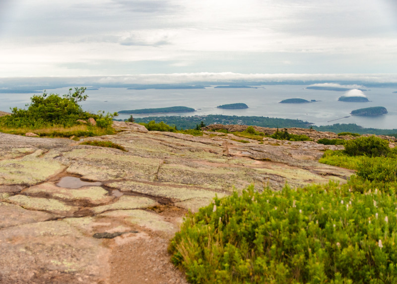 Acadia Nat'l Park-Terry's - July 2017-66.jpg