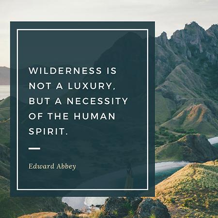 Wilderness is not a luxury.jpg