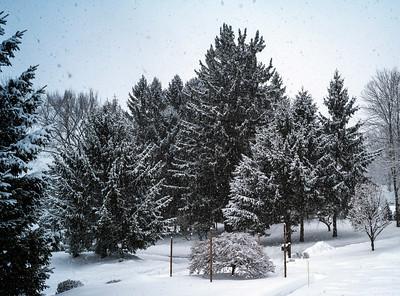 USR Winter - 2021