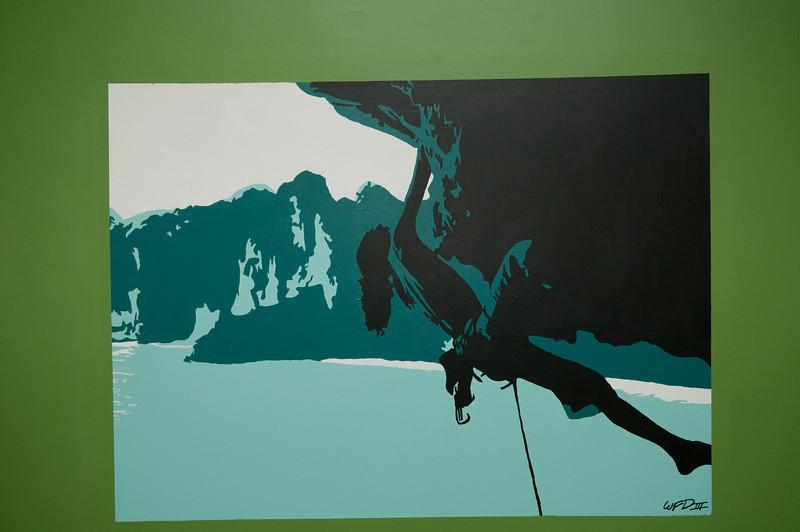 Rock Climbing Mural