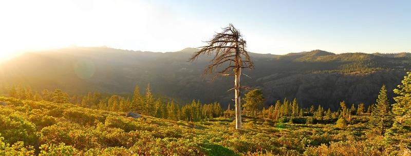 Eastern Sierras & Tahoe