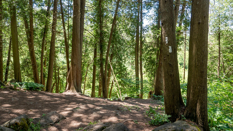 Ontario-Limehouse-Conservation-Area19.jpg