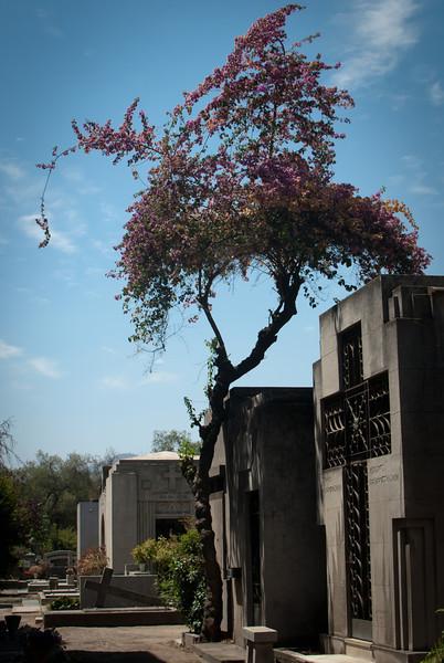 Santiago 201201 Cementerio (85).jpg