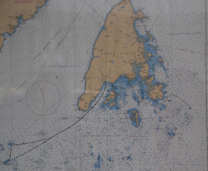 Machias Seal Island Trip - 005