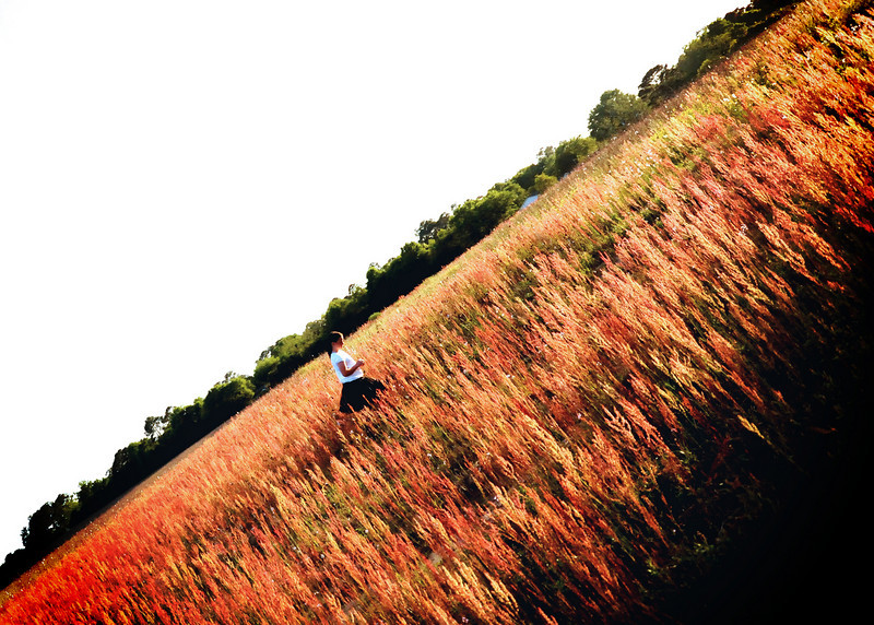 redgrass_9250 copy.jpg