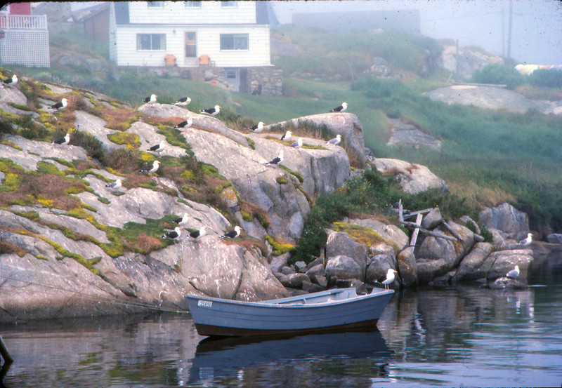 Peggy's Cove - 01-Edit.jpg