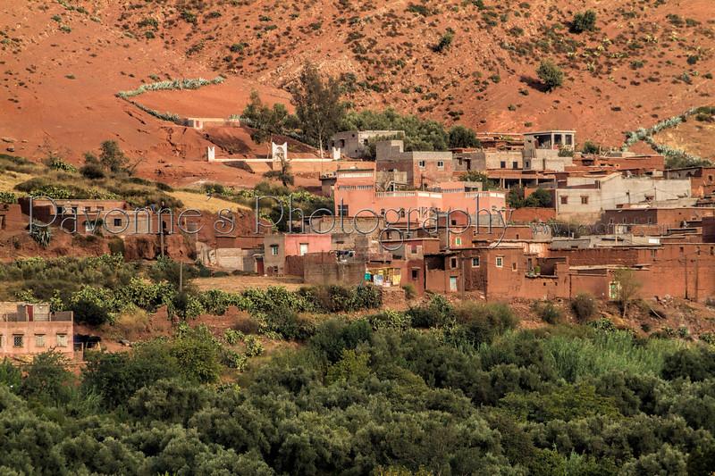 Morocco3 2755.jpg