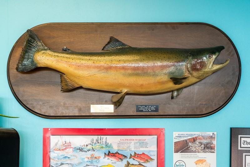 Pratt_Seattle Fish Guys_004.jpg