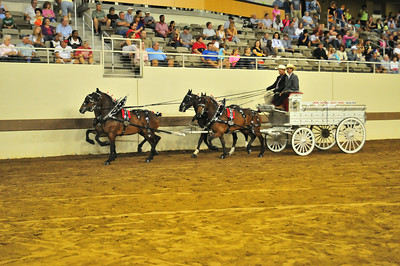 2014 Indiana State Fair Ponies