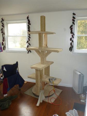 Cat Tower Build