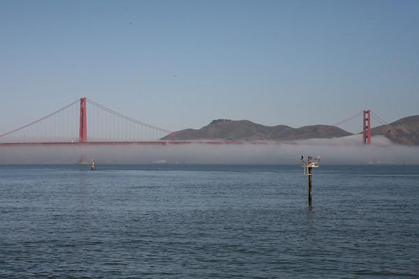Foggy Bridge - August 28th, 2007