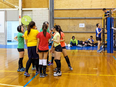 2014 Social Volleyball Tournament in Sydney