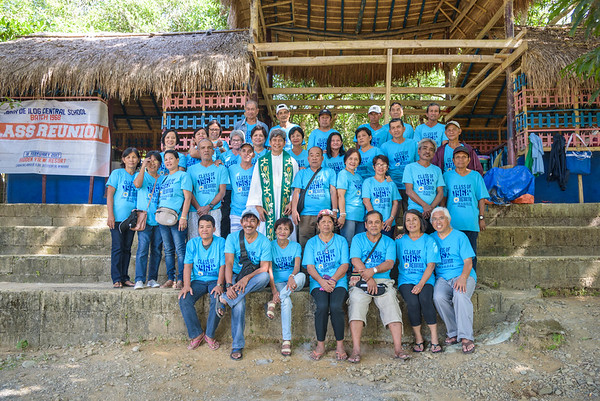 Abra de Ilog Elementary  School Reunion
