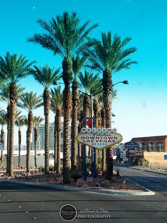 2014 Las Vegas Invitational