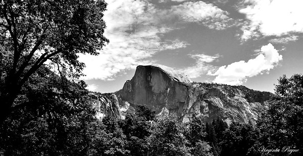Yosemite B&W - June 2019.