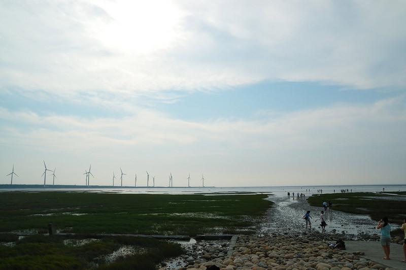 既然沿著海邊北上,繞進來高美濕地逛逛