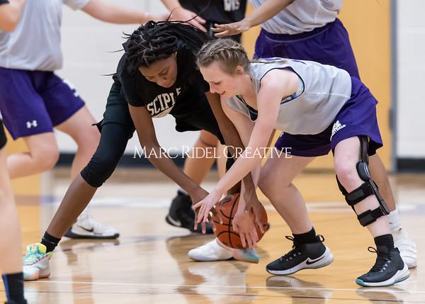 Broughton girls basketball vs Wake Forest. November 14, 2019. D4S_0039