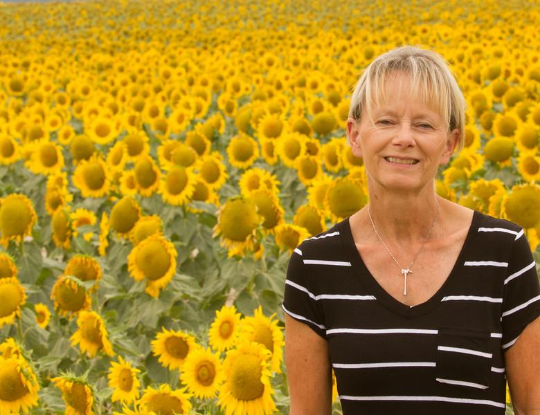 sun flowers-3899.jpg