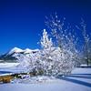 Yukon snowy landscape