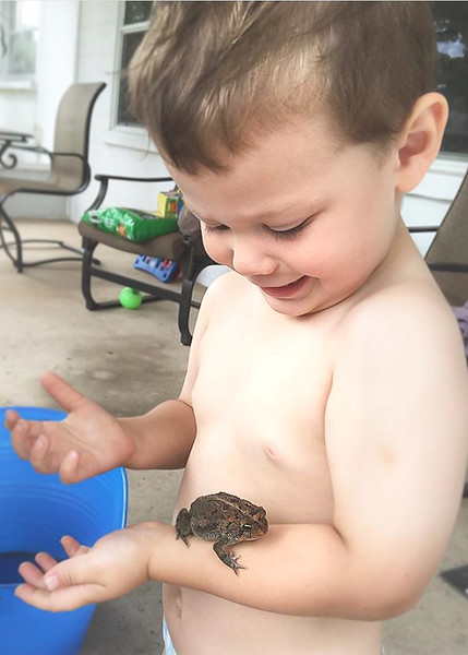 Lucas and the frogs