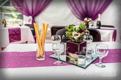 The Woodlands Reception