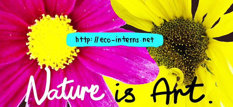 Eco-Interns_Billboard_NatureIsArt.jpg