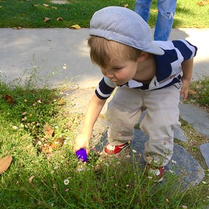 Roy Hunting for Easter Eggs, 2015