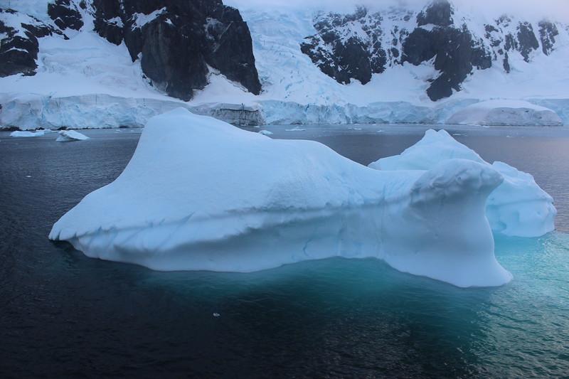 Antarctica 108.JPG