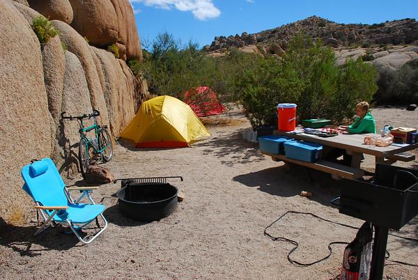 JTree Camping and Climbing 2010