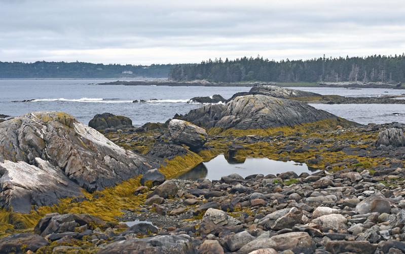 Nova Scotia July 2017_34.jpg