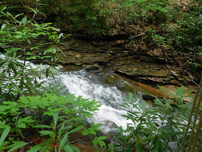 Lower Cole Run Falls