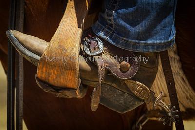 5-27-2105 Yolo Land & Cattle