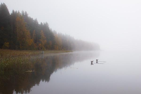 Syksy, Autumn