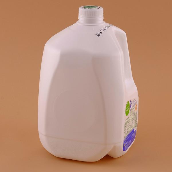 Milk Jug-XT1B1210.jpg