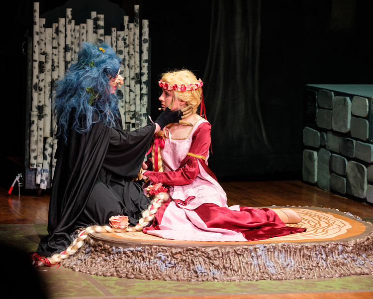 2018-03 Into the Woods Performance 0408.jpg
