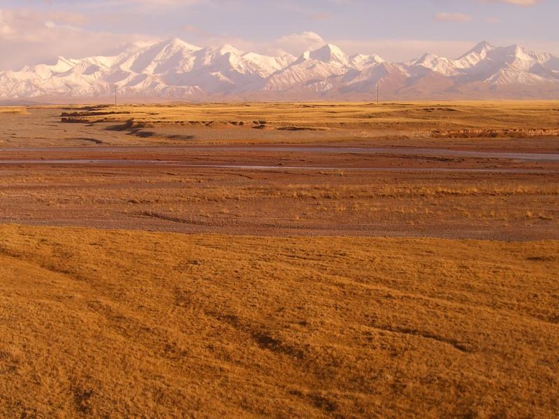 Fields Below Lenin Peak - Sary Moghul, Kyrgyzstan