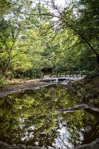Banita Creek  (21)