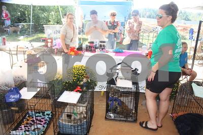 10/7/17 SPCA Of East Texas Hosts Dogtoberfest by David Thomas