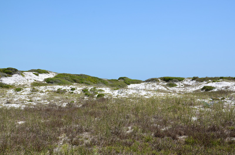 Grayton Beach State Park has consistently been ranked among the most beautiful beaches in the U.S.  Besides the beach a major draw to the park is the Western Lake area for hiking, fishing and kayaking.