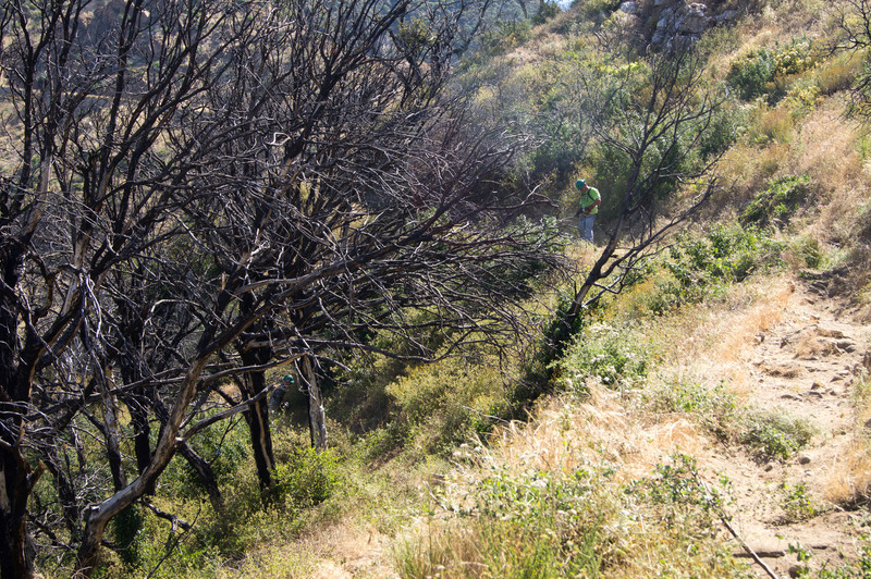 20120630032-Trailwork, MWBA, Sunset Ridge.jpg