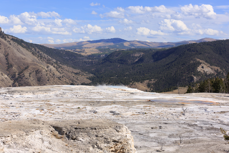 Mammoth Hot Springs 011