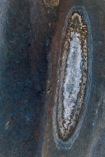 Galactheia VI