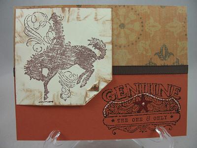 cards::stampinup
